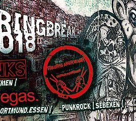 Plakat Punk Rock Konzert Mad Monks im Café am Heizhaus