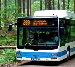 Ilsetaler - Linie 288