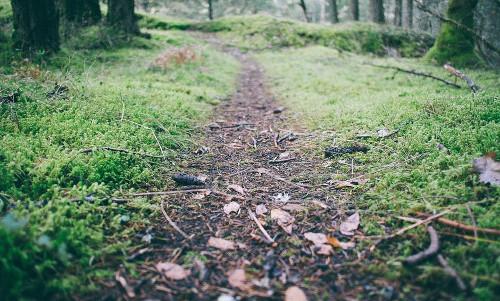 Adventure path