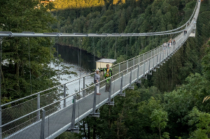 Harzdrenalin Titan Hängebrücke