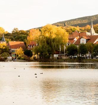 Ein Tag in Ilsenburg