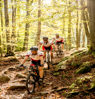 Mountain bike flyer